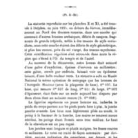 Perdrizet_1897-Sur_la_mitre_homerique.jpg